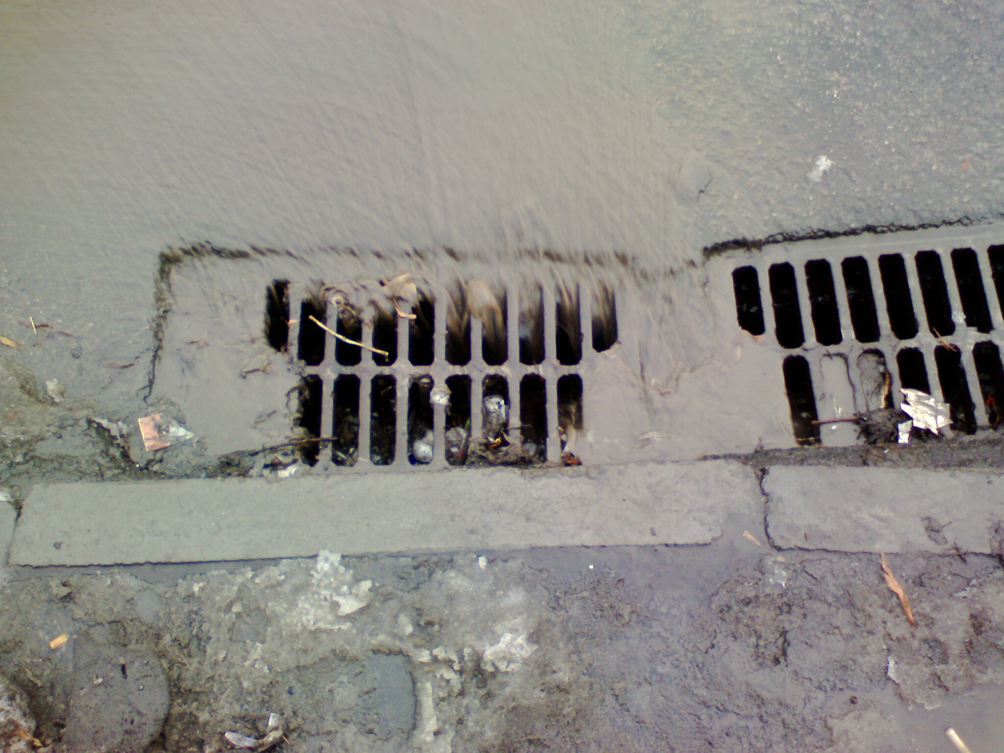 avoid stormwater pollution